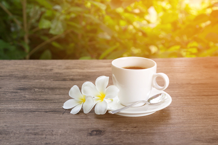 Coffee on wooden table with warm sunlight in a garden 写真素材