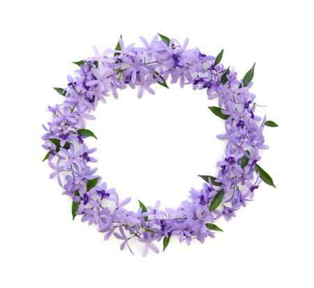 frame of purple flowers on a white background , card, greeting, template