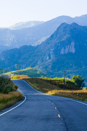 Road curves on the mountain and forest photo