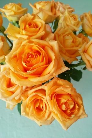 rosas naranjas: Naranja rosas Bouquet Foto de archivo