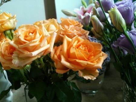 rosas naranjas: Naranja rosas Bouque