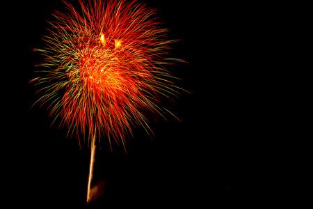 祝う: colorful firework celebrate