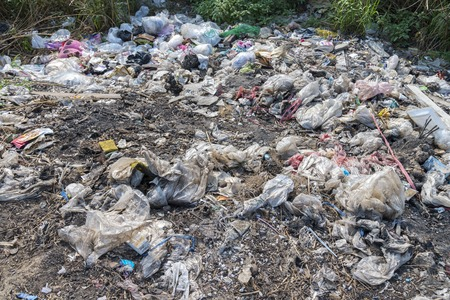 unhygienic: Waste Problem - Unhygienic litter