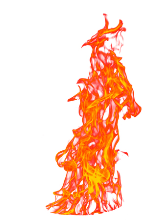 yellow, orange and red and red Fire flame isolated on white isolated background