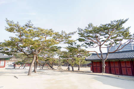 republic of korea: Korean Tradition decoration brick wall in Secret Garden -  Changdeok Palace or Changdeokgung  in winter season, Seoul, republic Korea, Korea traditional architecture