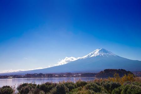 fuji mountain on blue sky background view from the lake kawaguchiko at oishi park, Yamanashi, Japan. the sacred mountain of Fuji and symbolic of Japanese