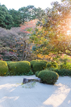 Japanese Garden Decor With Rock And Bush, Draw Lthe Line With Gravel In  Autumn Season