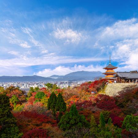 the beautiful Momiji autumn colorful red, green and yellow maple background at Kiyomizu-Dera temple and Kyoto, Japan, Kiyomizu-Dera is UNESCO world heritage sites