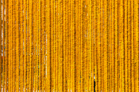 Row of marigold steering wheel, background and pattern 스톡 콘텐츠