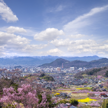 Cherry-blossom trees (Sakura) and many kinds of flowers in Hanamiyama  park and Fukushima cityscape, in Fukushima, Tohoku area, Japan. The park is very famous Sakura view spot Stock Photo