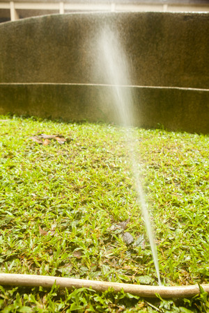 sprung: Water hose has sprung a leak when watering Stock Photo