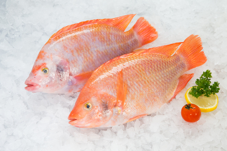 Fresh Red Tilapia on crushed ice
