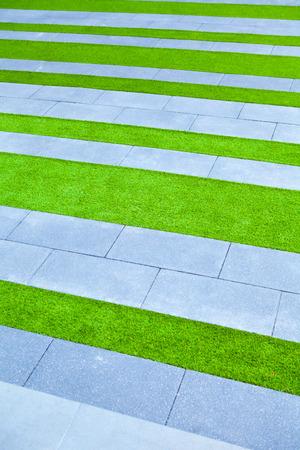 grass background green lawn pattern textured