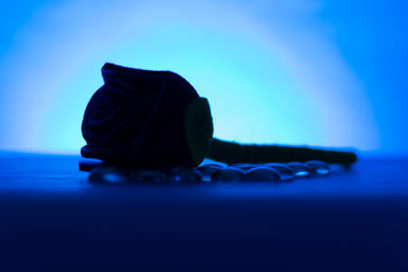 sweetest: Shot of a single red, fabric rose with decorative stones next to it on it blue background.
