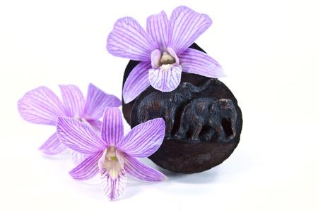 A faragás elefánt tetején fa doboz orchidea virágok.