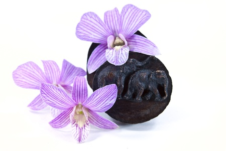 The carving of elephant on top of wood box with orchid flowers.