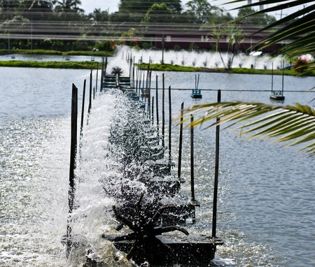 rearing of fish: Close up water wheel in shrimp farm, Thailand.