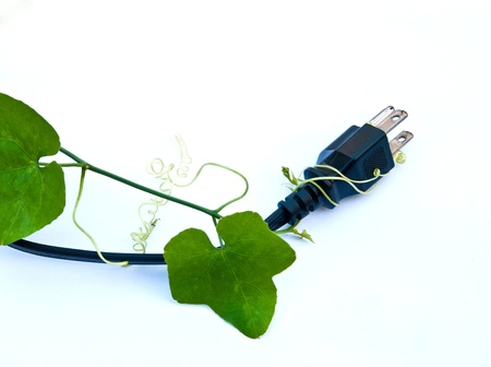 greenpeace: Green energy concepts, electric plug and cable with green leaves
