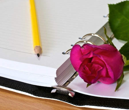 Open blank note book with rose  photo