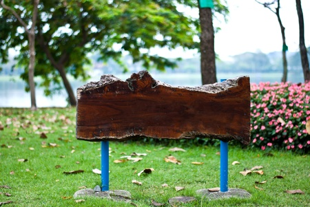 Blank wooden signboard at park Stock Photo - 12333992