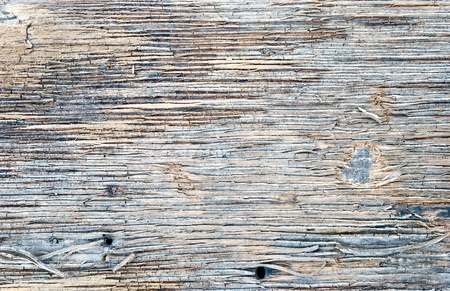 Detail of old wood texture Stock Photo - 13585015