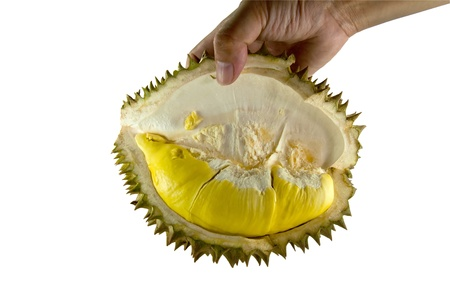 Hand holding Durian, the king of fruit with clipping path. photo