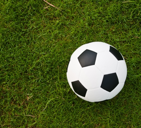 Soccer or football ball on green grass  Stock Photo - 13619576