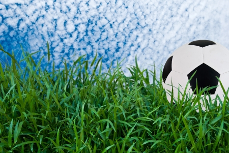 Football or soccer ball on green grass with blue sky photo