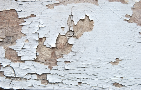 Peeling paint on old wood background  photo