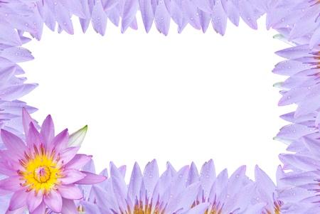 Lotus frame on white background photo