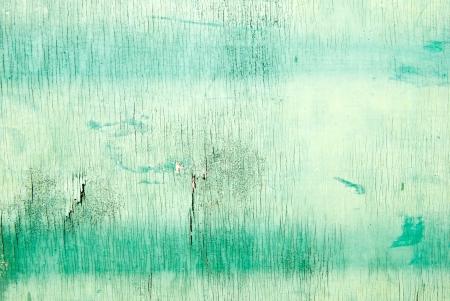 Green wood texture  photo