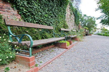 Wooden bench in the park  photo