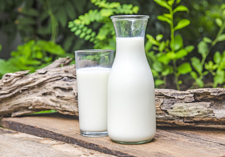 glass of milk: Glass bottle and glass with milk