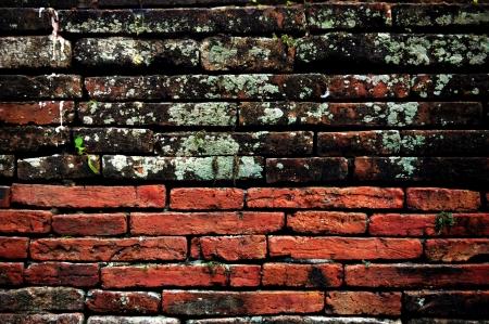 Old and new brick wall Reklamní fotografie