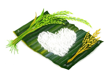 harvesting rice: Ripe Rice, Green Rice and Heart Shape of Boiled rice on Banana Leaf Stock Photo