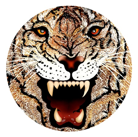Hand Drawing of Close up Tiger Face Portrait, Face Incorporated into A Circle Design Stock Photo - 14724732
