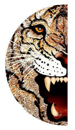 Hand Drawing of Close up Tiger Face Portrait, Face Incorporated into A Semicircle Design photo