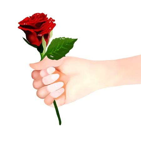 enamorados caricatura: El hombre o la mujer que sostiene una hermosa rosa roja para el amante, en el fondo blanco