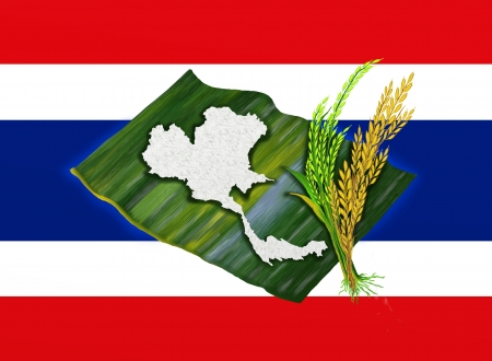 asian farmer: Ripe Rice, Green Rice and Boiled Rice of Thailand s Map Shape on Banana Leafon, on Thailand s National Flag Stock Photo