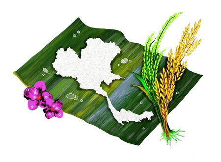 rice plant: Ripe Rice, Green Rice and Boiled Rice of Thailand s Map Shape with Violet Orchids, on Banana Leaf Stock Photo