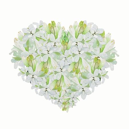 Une forme de coeur Belle fleur de tub�reuse blanche sur un fond blanc