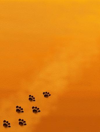 animal tracks: Disegno Mano di Animal Tracks in texture di sfondo sabbia marrone con Copyspace