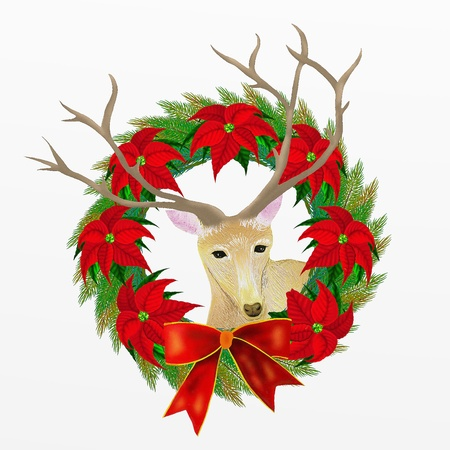 Close Up Portrait of A Lovely Deer with Christmas Wreath Isolated on White Background, for Christmas Celebration   photo