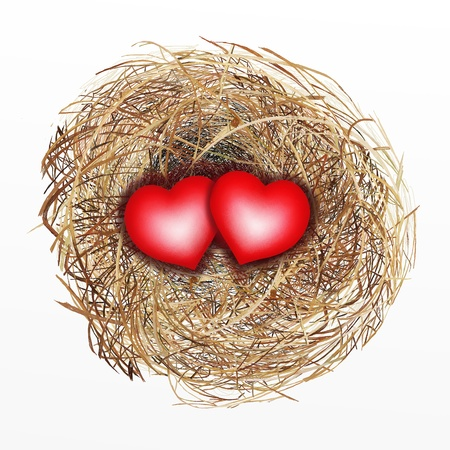Love Concept, Two Heart in Bird Nest Isolated on A White Background photo