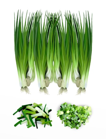 onion isolated: Hand Drawing of Fresh of Slices and Diced Green Scallions  Spring Onions  or Fresh Leeks, Isolated on White Background
