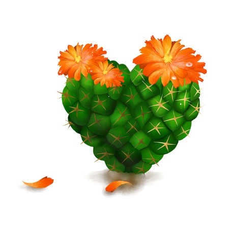 Closeup of Cute Green Cactus and Yellow Cactus Flowers in A Heart Shape, Isolated on White Background  photo