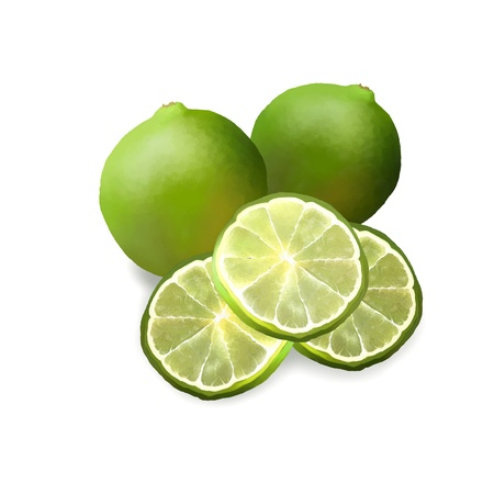 lemon lime: Hand Drawing of Green Fresh Ripe Limes and Limes Slice Used for Seasoning in Cooking, Isolated on White Background
