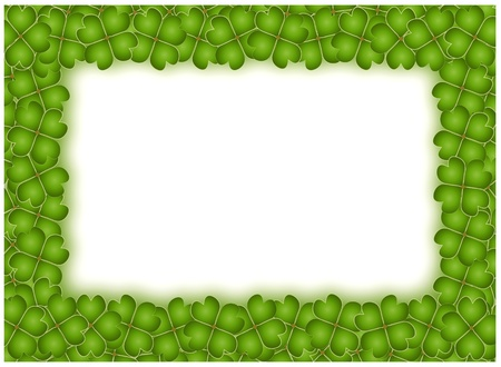 A Lovely Frame of Green Lucky Four Leaf Clovers photo