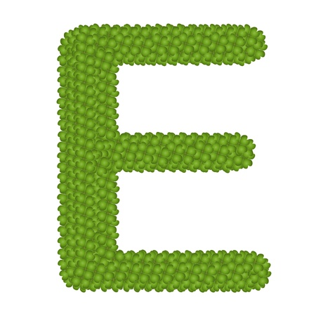 Letter E, Alphabet Letters Made of Four Leaf Clover Isolated on White Background Stock Photo - 16010848