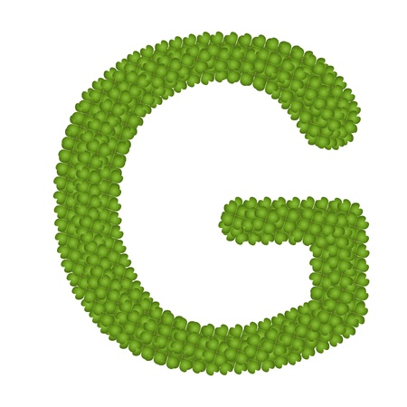 Letter G, Alphabet Letters Made of Four Leaf Clover Isolated on White Background Stock Photo - 16010847
